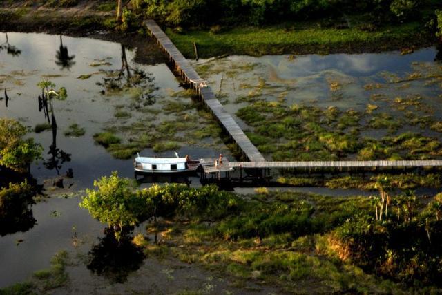 Projeto possibilita que extrativistas do Xingu explorem madeira legalizada
