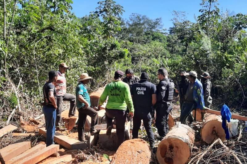 Cinco homens são flagrados desmatando floresta na Transamazônica em Placas