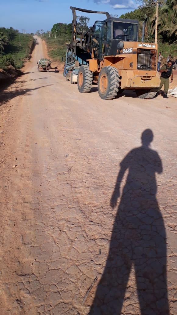 Polícia investiga acidente com animais na Transiriri