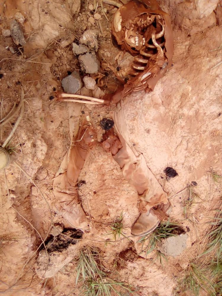 Polícia investiga surgimento de ossada humana em Pacajá